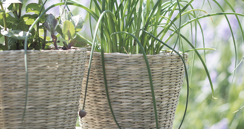 1. Seagrass baskets